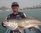 《EWE路亞》 海水飄著水母,不料餌一沉,力拔巨型紅鼓!