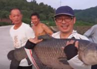 《麦子钓鱼》浮底结合钓巨物青鱼 路人纷纷围观赞叹 鱼好大