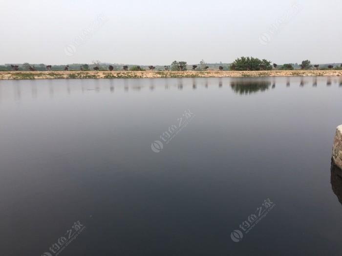 东双庙鱼乐园