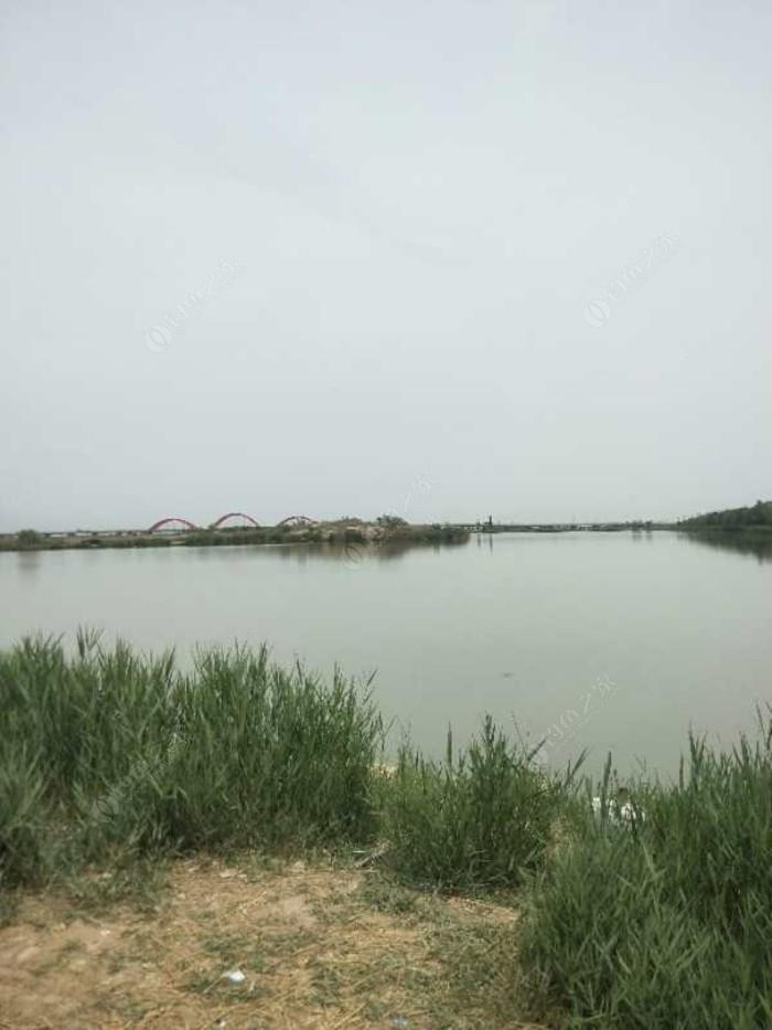 阅海十号湖垂钓场