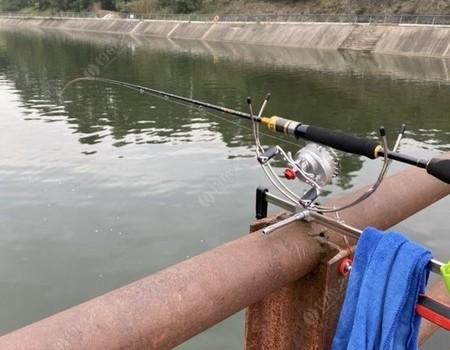 钓鱼要到桥上钓,不到桥上钓不到