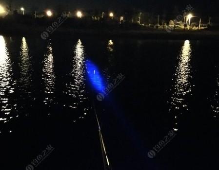 夜钓日月湖,网阵求生记