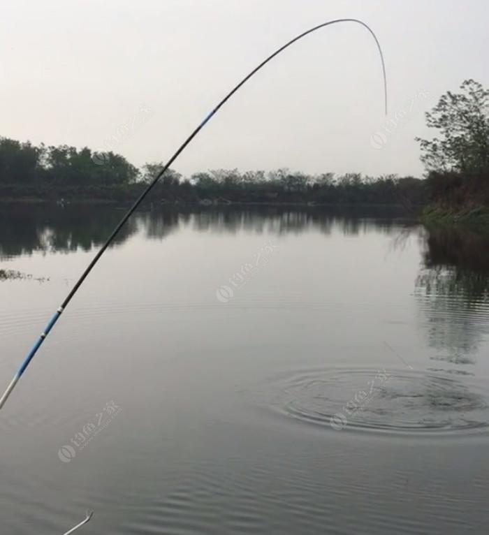 六合山庄鱼塘