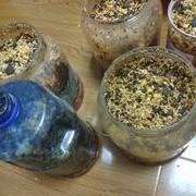 [技巧_自制窝料]秘制酒米窝料的制作过程。春夏诱草鱼一流。