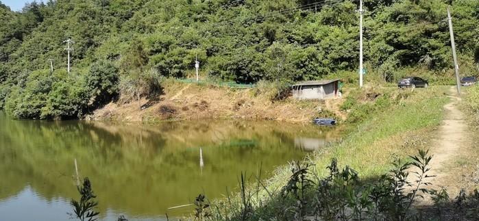 青石生态垂钓园