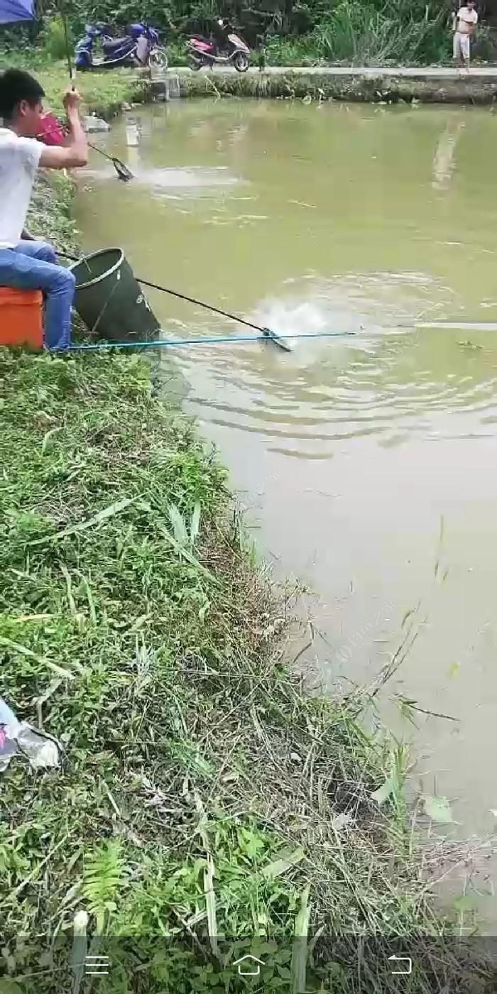黄双开心钓鱼场