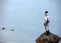 秋季外出野釣 釣位選擇全攻略!