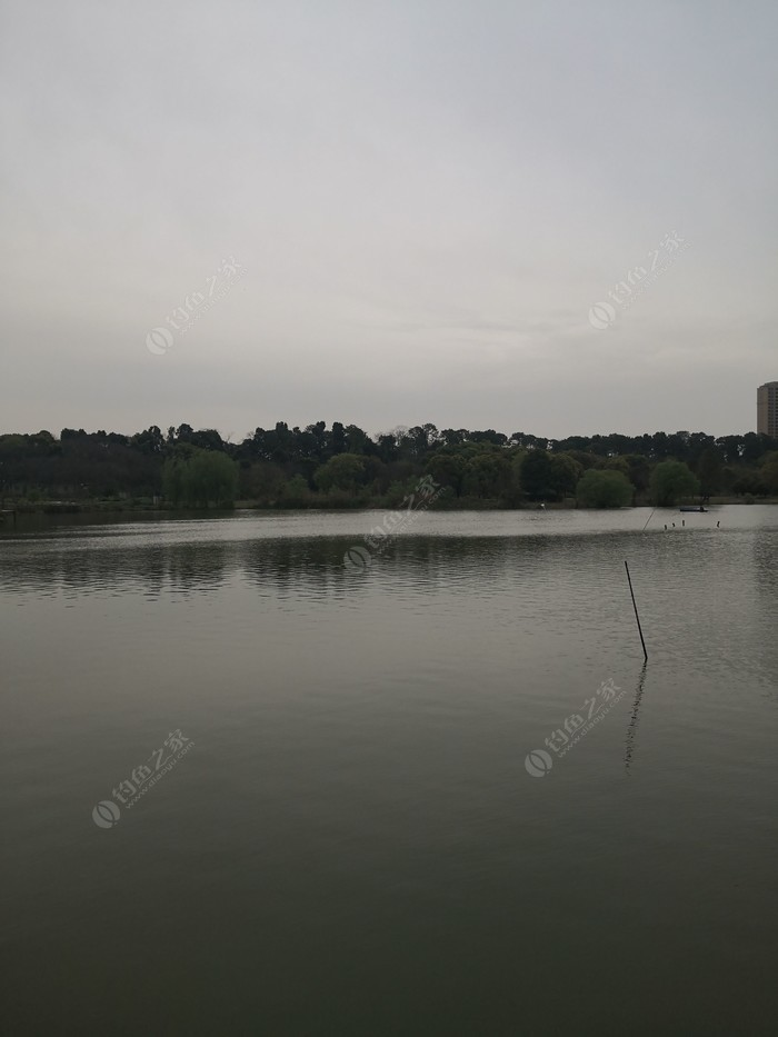 严西湖青龙湾垂钓园
