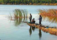秋季钓鱼之钓位选择很重要!