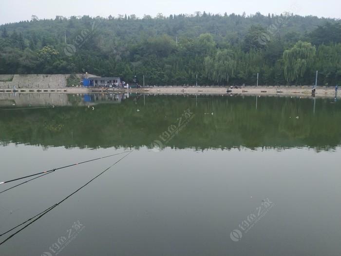 溫馨湖魚塘