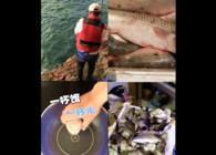 《東北漁事》遼寧眾信紅海哥爆風3合1海釣就是好使