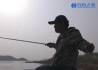 《钓鱼百科》第276集 怎么应对水位变化?