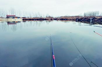 冬季钓鲫鱼牢记这三点,不愁钓不到。