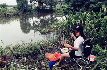 初冬季節釣位要這么選,魚獲會更多!