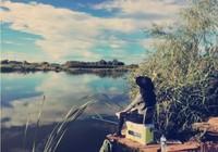 初冬季节钓位要这么选,鱼获会更多!