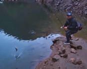 《DNE去路亚》雨天傍晚的高山水库,抓住斑鳜狂拔的好机会!