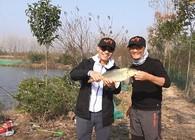 《白条游钓》冬季深水藏大鱼,远投滑漂钓法效果明显,连竿大鲤鱼 !