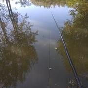 伏天约钓新河道,再次挑战酷暑天,这样执着于钓鱼,算不算真爱?