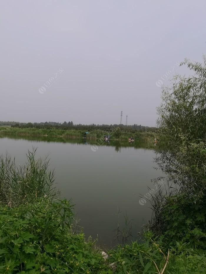龍湖濕地公園