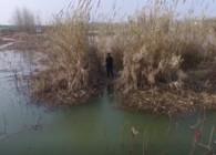 《游钓中国5》第14集 残荷塘中藏大鲫鱼 灵活多变轻松上鱼