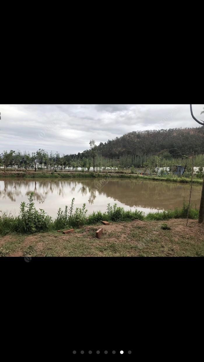 嘉缘生态钓鱼场