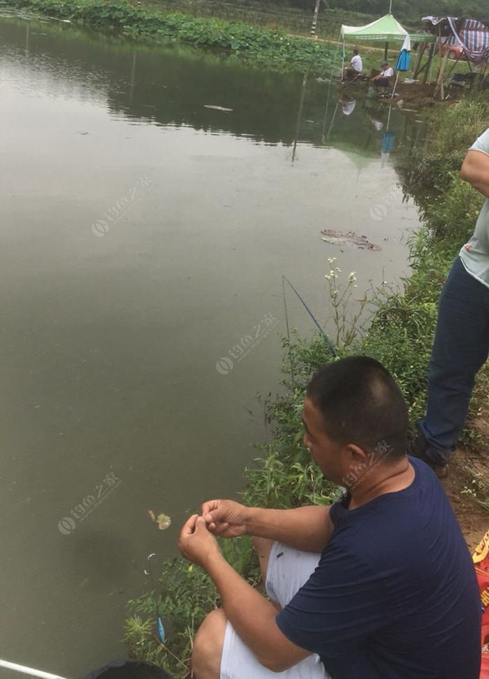 龙灵山钓鱼场