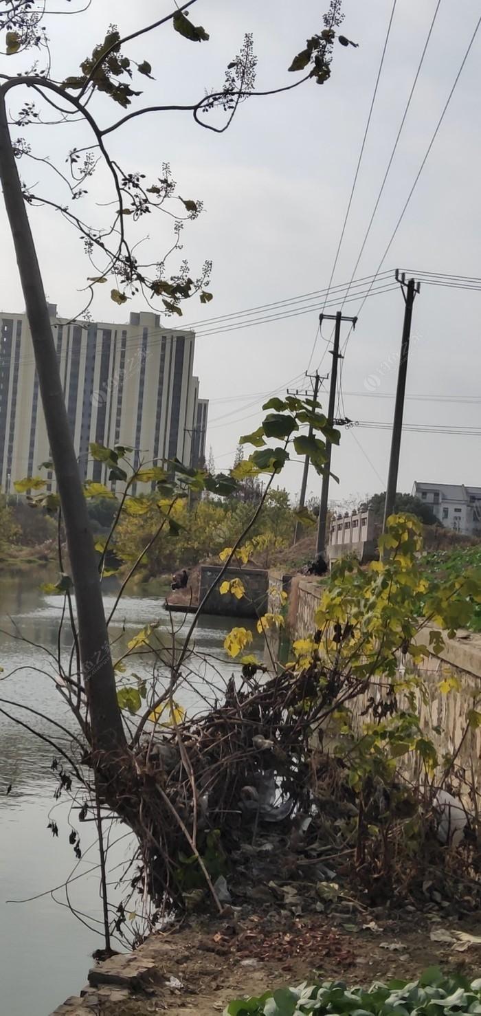 望虞河支流