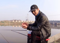 《麦子钓鱼》钓鱼实战,多窝流水作钓,数次弯弓!