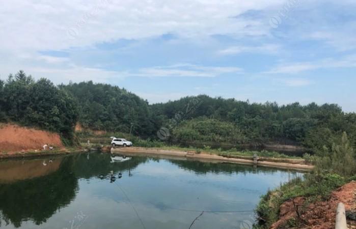 胡汉水钓鱼山庄