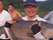 《麦子钓鱼》浮底结合钓巨物青鱼,路人纷纷围观赞叹,鱼好大
