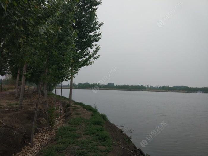 南刘庄百亩垂钓园