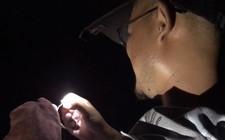 《户外老曹》 实战:夜钓汪刺用上串钩,钓上的鱼个体大,效果相当好!