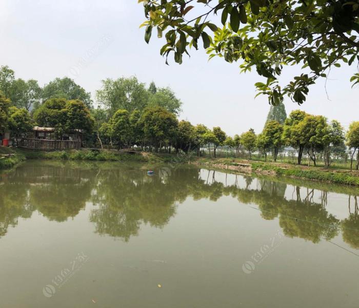 大王庄垂钓园