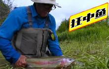 《全球钓鱼集锦》电影般的质感,帅气大叔山间溪谷飞蝇钓!