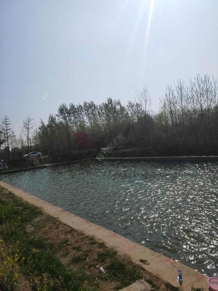 陈化店鱼塘