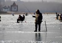 釣魚新手也能學會的冰釣技巧!