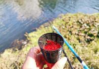 冬季遇到小型水域該如何作釣?