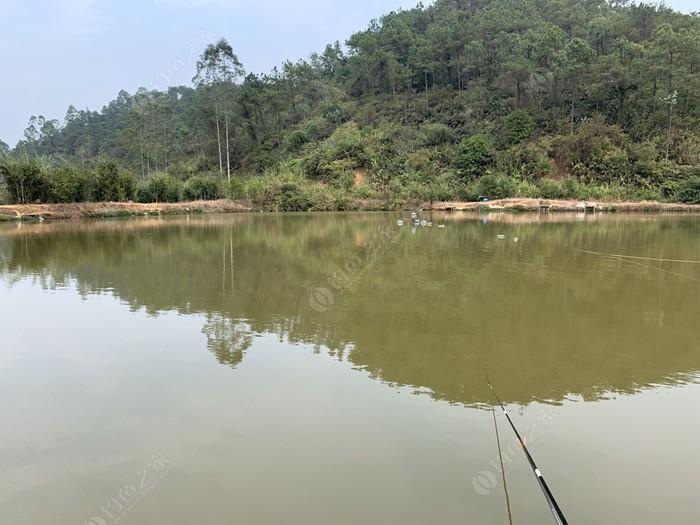 豪仔钓鱼场