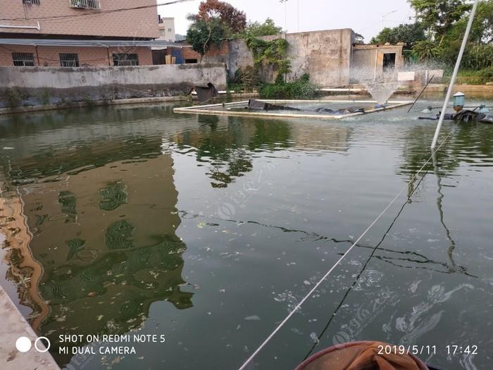 吓坡村钓鱼场