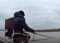 《麥子釣魚》釣魚實戰 走水釣魚 鯽魚 鯔魚連竿拔 爆魚桶