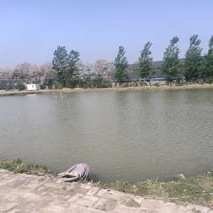 河南太公湖垂钓基地