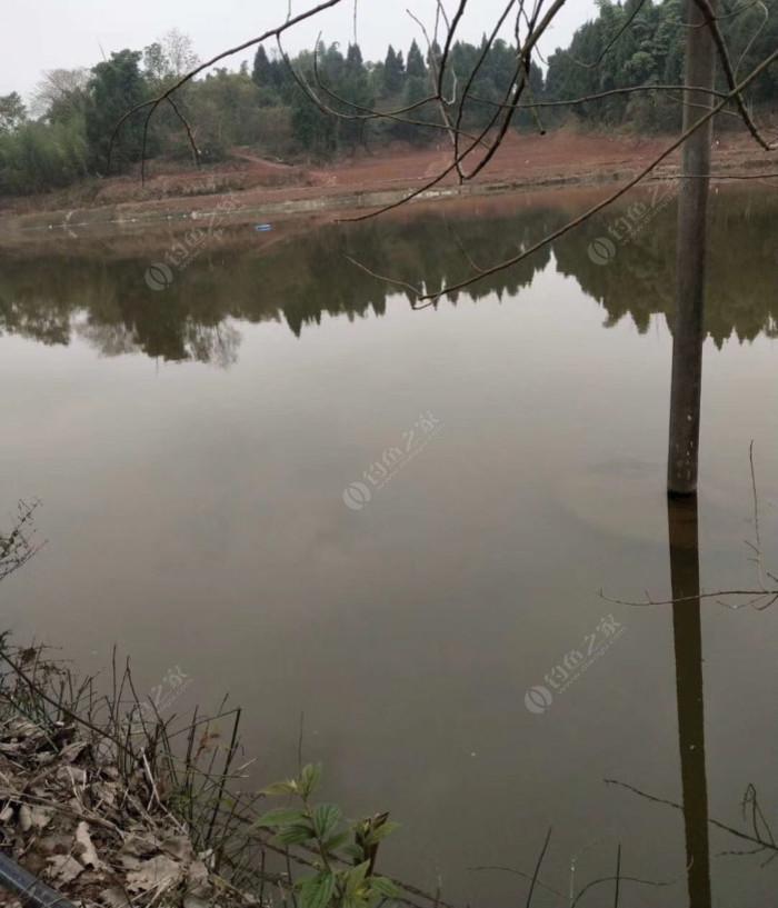 绿水庄园钓鱼场