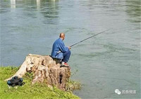"""初夏不同時間段出釣 你需要這樣找""""黃金釣點"""""""