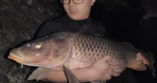 法国塞纳河畔官方频上巨物,钓鱼无国界!