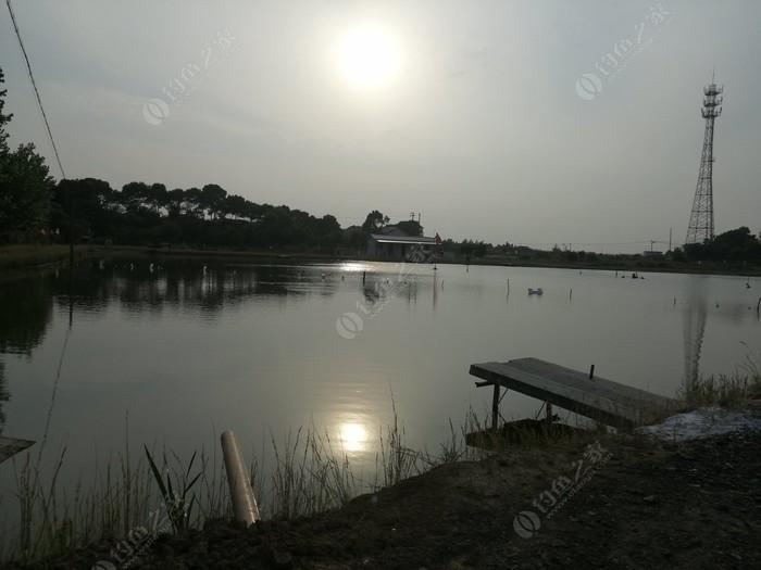 东坝沛桥钓场