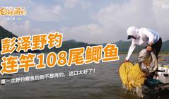 《白條游釣》5000畝的大水庫,大鯽魚泛濫成災,半天連竿108尾!