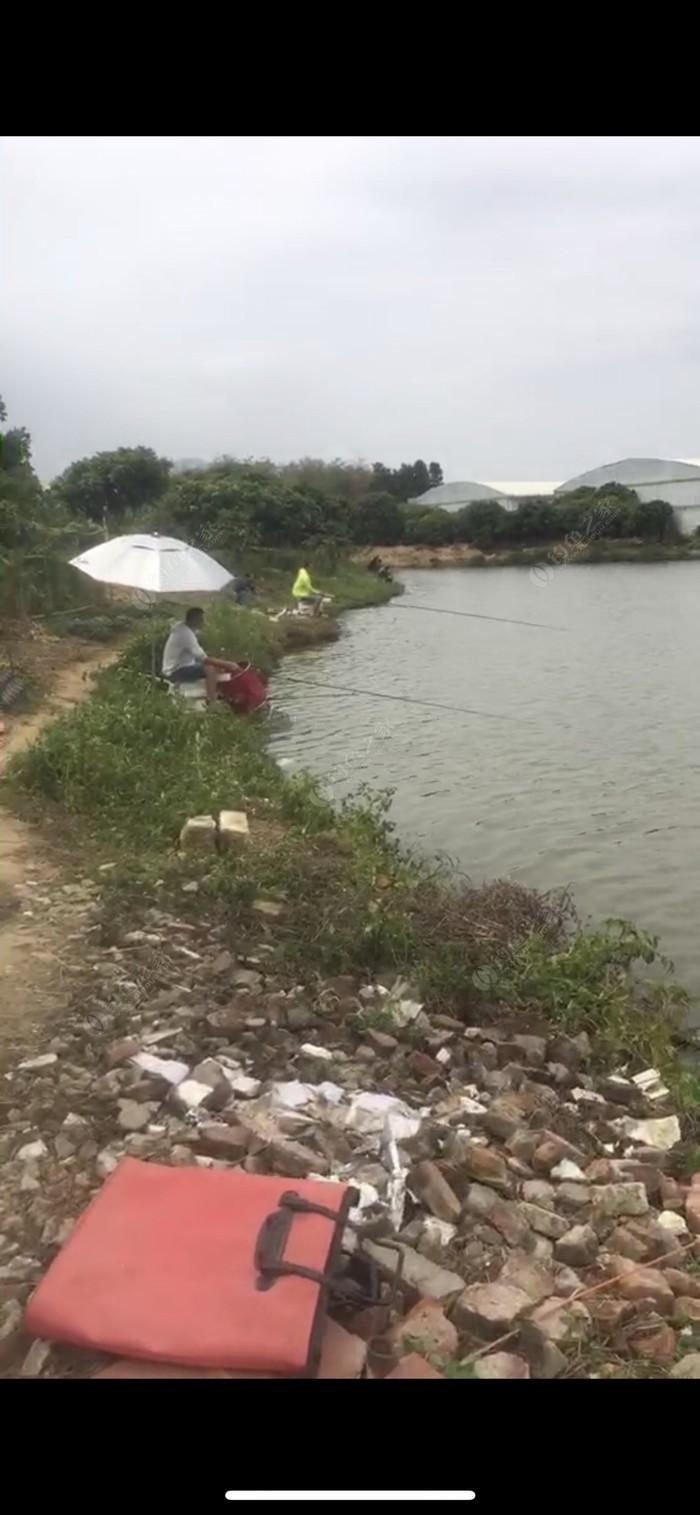 蒋田钓鱼场