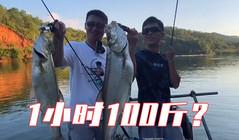 《EWE路亞》兩位釣魚冠軍被拉去做苦力,結局真的讓人很意外 !