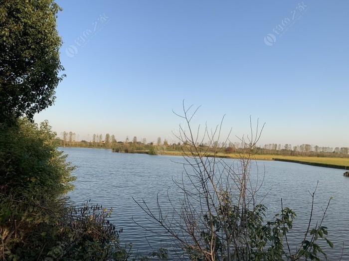 新淮章河埂坝