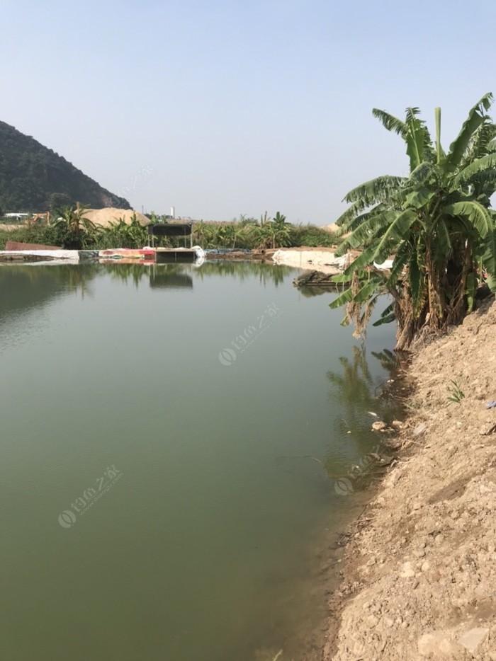 紫竹灣釣魚場
